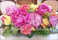 20140609_bridal.jpg